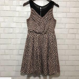 LC Lauren Conrad Dress Beige Black Polka Dot 6